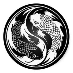 "Koi fish are the domesticated variety of common carp. Actually, the word ""koi"" comes from the Japanese word that means ""carp"". Outdoor koi ponds are relaxing. Yin Yang Tattoos, Tatuajes Yin Yang, Tribal Tattoos, Arte Yin Yang, Yin Yang Koi, Ying Y Yang, Carpe Coi, Art Koi, Yen Yang"