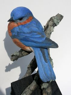 Eastern Bluebird bird wood carving: