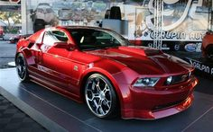 2005 ford mustang gt500 my dream car, well one of them anyway lol :P