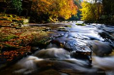 Walks Woods at Allen Banks with the river flowing through Staward Gorge. Landscape Photography, Travel Photography, Northern England, Walk In The Woods, Secret Places, Photos Of The Week, Woodland, Cool Photos, Waterfall