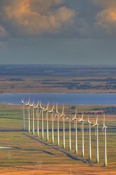 ✮ Windmill farm in Brazil - Awesome Pic!