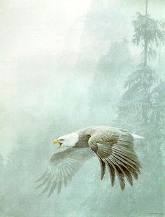 'Vigilance' Limited Edition Print by Robert Bateman