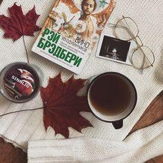 Autumn mood Book Tea Sweater weather Autumn