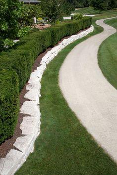 Yew hedge along cart path