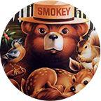 Smokey Bear profile illustration