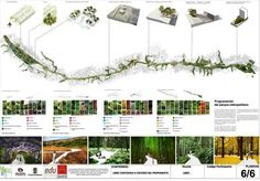 """O projeto é o """"Parque Botânico Rio Medellín"""", desenvolvido pelo escritório Latitude Oficina Arquitetura."""
