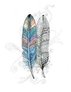 zentangle feather - Google Search