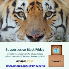 ATTN: Amazon Shoppers – Black Friday  Black Friday is one of the busiest shopping days of the year. Did you know you can support your favorite cats when you shop on Black Friday?  Go to smile.amazon.com/ch/59-3330495 and Amazon donates to Big Cat Rescue, at no extra cost to you.