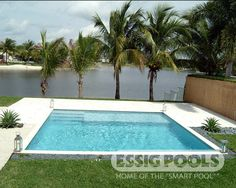 Essig Pools, Miami, FL ....Click to close image, click and drag to move. Use arrow keys for next and previous.
