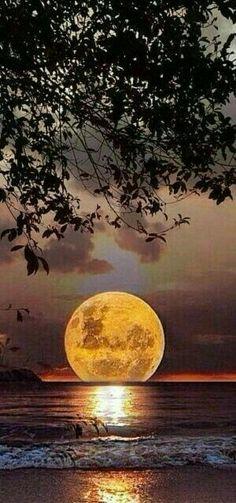 Les 20+ meilleures images de Tableau lune | photos paysage, belle photo,  coucher de soleil
