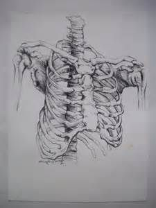 GRAPHITE skeleton DRAWINGS - - Yahoo Image Search Results