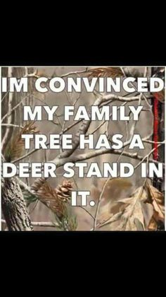 I& convinced my family tree has a deer stand in it.