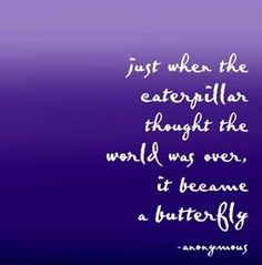 Never Give Up! The caterpillar didn't!