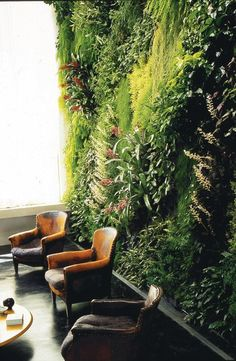 Vertical Garden- Green Wall Another example of a living wall. Densely planted with diagonal lines and lots of foliage texture.Another example of a living wall. Densely planted with diagonal lines and lots of foliage texture. Vertikal Garden, Vertical Garden Wall, Inside Garden, Artificial Plants, Artificial Green Wall, Garden Inspiration, Interior Inspiration, Indoor Plants, Garden Design