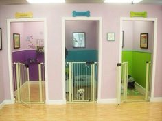 Doggie foster mom's setup for her pooch guests. Nice!