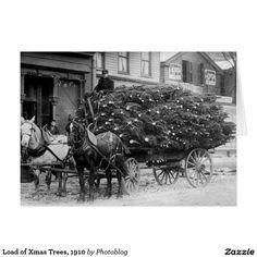 Load of Xmas Trees, 1910