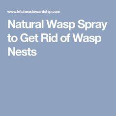 Natural Wasp Spray to Get Rid of Wasp Nests