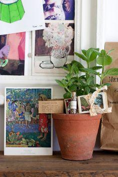 Urban Jungle Bloggers: Give a Friend a Plant via @lobsterandswan
