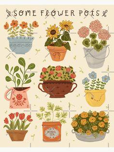 Plant Illustration, Cute Illustration, Botanical Illustration, Graphic Design Illustration, Sunflower Illustration, Digital Illustration, Flower Pot Art, Flower Pots, Flowers