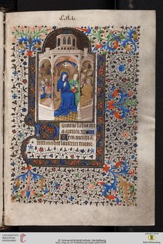 Beautiful border.  Is there a name for this style?  Cod. Sal. IXe: Cod. Sal. IXe Livre d'heures (Paris, 1420/30)