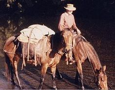 Australian stockman on mustering trip. Pack horse is carrying an army style packsaddle, together with pack bags and a swag (bedroll) on top and secured by a surcingle passing over the top. Horse Camp, Outdoor Life, Beautiful Horses, Life Is Good, Camping, Illustration, Painting, Animals, Army Style
