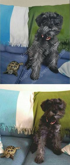 This is a stunning painting of a gorgeous dog and tortoise. We have attached the original photograph. All work is bespoke and acrylic paint on canvas. This is A3 sized. Other sizes are available. A unique gift. I am a self taught artist, I did study history of art, however I