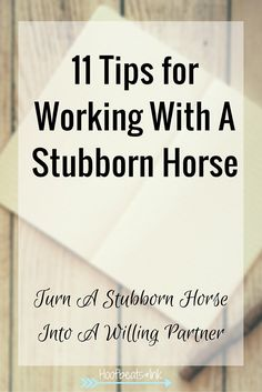 11 Tips for working with a stubborn horse. Turn a stubborn horse into a willing partner. via Hoofbeats and Ink.
