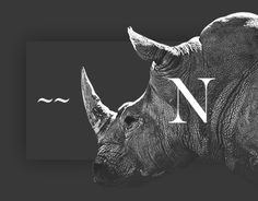 Consulter ce projet @Behance: «Namibia Animal Park» https://www.behance.net/gallery/44004339/Namibia-Animal-Park