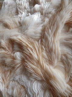 feine Strukturen feine Strukturen The post feine Strukturen appeared first on Tapeten ideen. feine Strukturen feine Strukturen The post feine Strukturen appeared first on Tapeten ideen. Gray Aesthetic, Textile Texture, Feather Texture, Rug Texture, White Fabric Texture, Texture Design, Fabric Manipulation, Textures Patterns, Fabric Textures