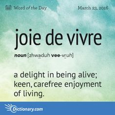 Joie de vivre definition, a delight in being alive; keen, carefree enjoyment of living. Unusual Words, Weird Words, Rare Words, Big Words, Words To Use, Unique Words, Powerful Words, Cool Words, Cool French Words