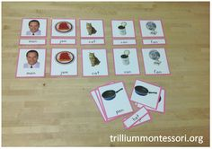 Montessori Phonetic Reading 3-Part Cards CVC (pink series).  Line up the pictures.  Read the word labels and match.  Check your work using the control card.