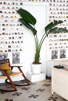 This would be a fun way to display all those Polaroids