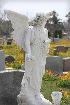 galveston cemetery Angel