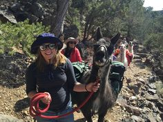 No matter whether you are seeking wild river adventures or simply explore the mountains, active travel in Taos has a lot to offer. New Mexico Tourism, Gorges State Park, Taos Pueblo, Taos New Mexico, Mountain Bike Trails, Go Hiking, Cross Country Skiing, Travel Activities, Day Hike