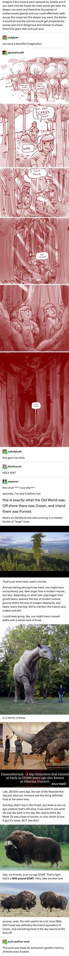 i accidentally cropped the top part but op is peachvers History Memes, History Facts, Story Inspiration, Writing Inspiration, All Meme, A Silent Voice, Tumblr Stuff, Mystery, The More You Know