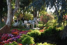 Grand Tradition Estate - Fallbrook, CA San Diego Wedding Venues, Wedding Reception Venues, Wedding Vendors, Air Tent, San Diego Vacation, Most Beautiful Gardens, Lush Garden, Laguna Beach, Celebrity Weddings