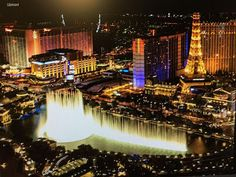 Best Hotels In Vegas, Las Vegas Hotel Deals, Bellagio Conservatory, Boulder City, Mgm Grand Garden Arena, Caesars Palace, Las Vegas Strip, Paris Hotels, Condos For Sale