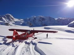 Piper Cub on skis