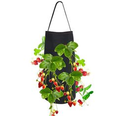 Pri Gardens Hanging Strawberry Planter for Strawberry Bare Root Plants (Roots not Included) Felt Material 2 Pack, Improved for Spring 2020 Strawberry Planters, Felt Material, Outdoor Gardens, Roots, Joy, Plants, Chili, Strawberries, Modern
