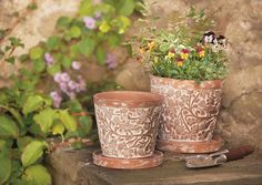 Bird And Bramble Plant Pot Set By Traidcraft - pots Terracotta Plant Pots, Interior Design Website, Pot Sets, Bramble, Own Home, Potted Plants, Food For Thought, Personalized Gifts, Garden Design