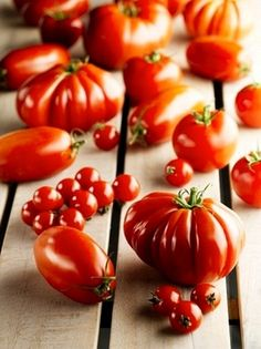 kinds of melons in dishes | tomatoes Types of Tomatoes in Pakistan Picture