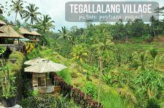 Tegalalang Village, Ubud | Bali Kura-Kura Guide #bali #ubud #travel #holiday #shopping #restaurants #ricefields #photography