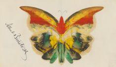 Yellow Butterfly, Albert Bierstadt, ca. blue pencil, oil and graphite, x Yale University Art Gallery. Morpho Butterfly, Blue Morpho, Butterfly Crafts, Martin Johnson Heade, Princess Painting, Albert Bierstadt, Hudson River School, Butterfly Painting, Figure Painting