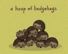 a heap of hedgehogs  limited edition print 23/100 by mywireempire, $20.00