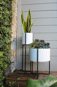 Evie Group - Collection: Oliver Tray Tables & Planters