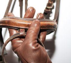 Reithandschuhe aus feinstem Leder ... für eine gefühlvolle Verbindung zum Pferd. W&F Meisterhandschuhe.