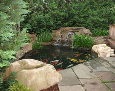 Small Backyard Koi Pond With Waterfall : Tips To Caring The Koi Ponds
