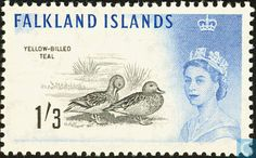 Postage Stamps - Falkland Islands - Native Birds