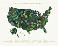 Botanic Colonies of the United States