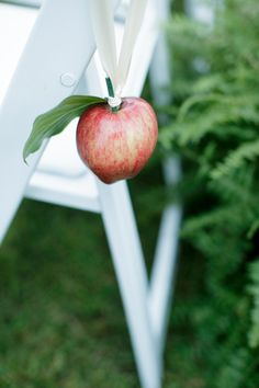 Simple apples make impressive decorations - see this blog post for some other unique ideas  -  http://ncweddingministerblog.blogspot.com/2013/03/stephanie-and-ted-have-fun-wedding-at.html#
